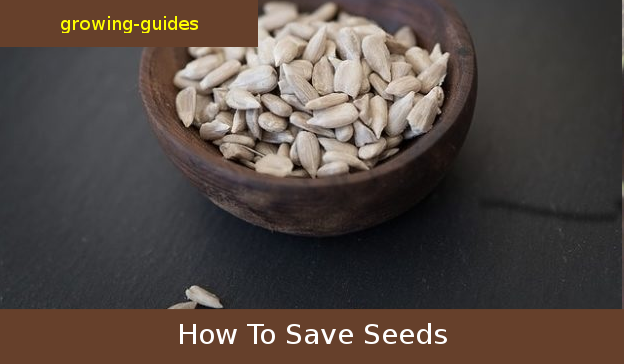 how to save seed